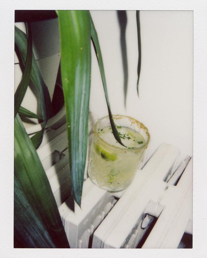 FedericoCiamei-cocktaildiary-09.jpg